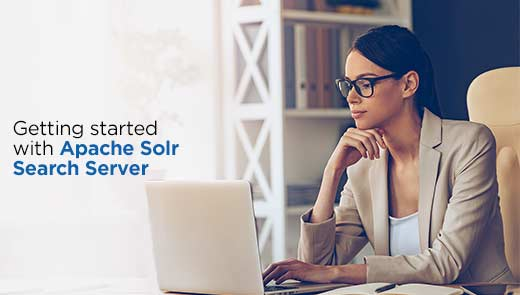 Getting started with Apache Solr Search Server